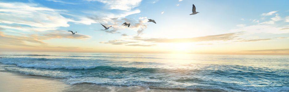 cropped-beach-1852945-2.jpg